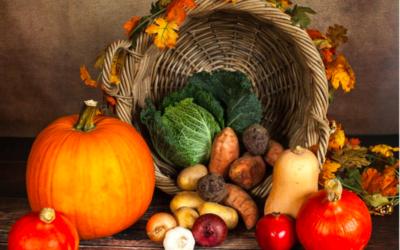 November Wellness Guide